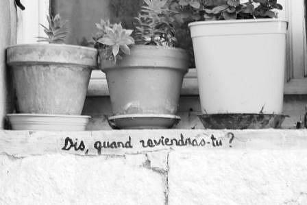 Fabien-question.JPG