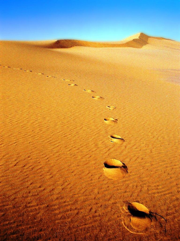 Desert-Gilles-N-Photo-n3-pour-le-theme-Coup-de-coeur.jpg
